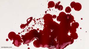 Obat Tradisional Pengencer Darah Kental